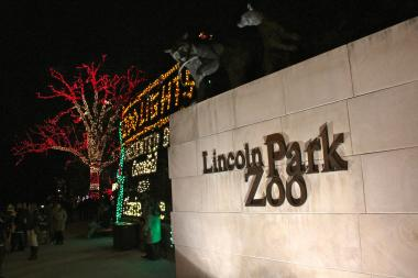 Lincoln Park Zoo's holiday wish list for its animals includes a piñata for gorillas and fish filets for the storks.