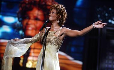 Among the top 10 were Whitney Houston, the Metra, the Bears and winning the big bucks at Mega Millions.