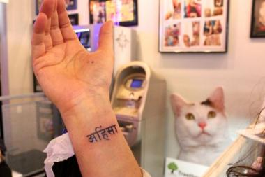 "Jenny Schlueter, 39, director of development for the Tree House Animal Humane Society, got her very first tattoo Saturday night during a 'tats for cats' fundraiser at Insight Studios, a tattoo and piercing parlor in Noble Square. The tat, on the inside of Schlueter's right wrist, is a Sanskrit word which translates into ""no harm, no violence,"" Ahimsa also means exhibiting kindness and non violence toward all living things, including animals."
