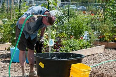 Peterson Garden Project: Steps to building a community garden.