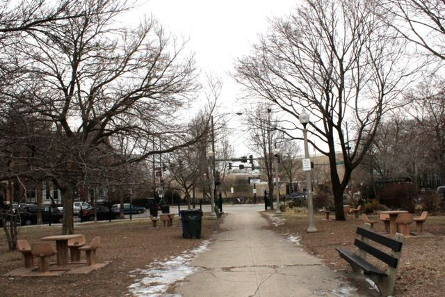 <p>Members of the Wicker Park Advisory Council voted 14-1 in favor of removing four chess tables in the park at 1425 N. Damen Ave.</p>