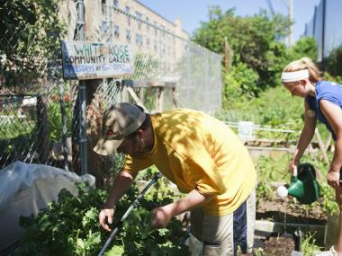 John Bambrick, a founder of the White Rose Catholic Worker home, tends to produce in a garden outside the group's former home on the North Side.