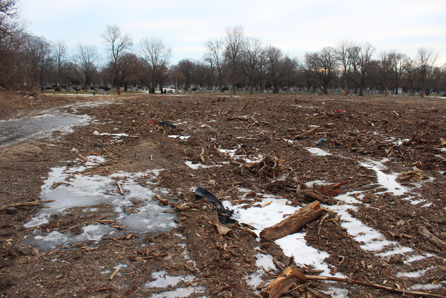<p>Rosehill Cemetery clear cut several acres of trees on their property to make room for more gravesites.</p>
