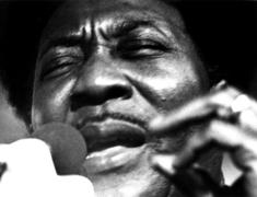 Muddy Waters' Home 'Endangered'