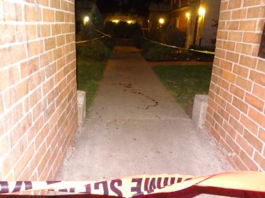 A man and a woman were shot in a possible gang-related incident about 11 p.m. Thursday in South Shore, police said. The two were outside in the 6700 block of South Paxton when two males approached and fired shots, said Officer Amina Greer, a Chicago Police Department spokeswoman.