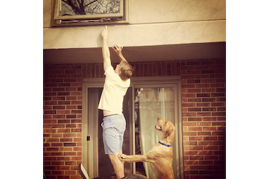 Chris Rolfe and his dog Nashville try to capture Rolfe's cat, Leroy, at Rolfe's Lincoln Park townhouse near Oz Park.
