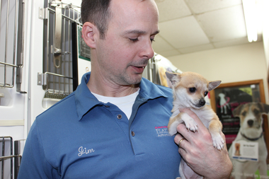 Pet Shops Raising Money To Fight City's Puppy Mill Ban