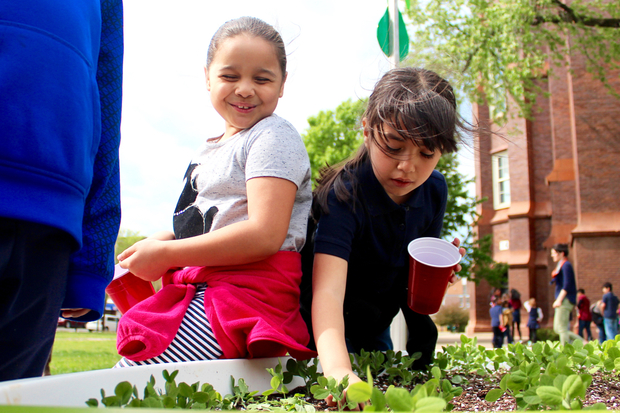 The Moos Elementary School Garden Club has grown to more than 100 students in less than a year.