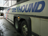 Greyhound Bus Stop on Essex St. to Go Ahead Despite Opposition