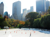 Man Robbed of iPod and Slashed in Central Park