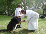 St. John's Cathedral Welcomes Pets, Exotic Animals for Annual Blessing