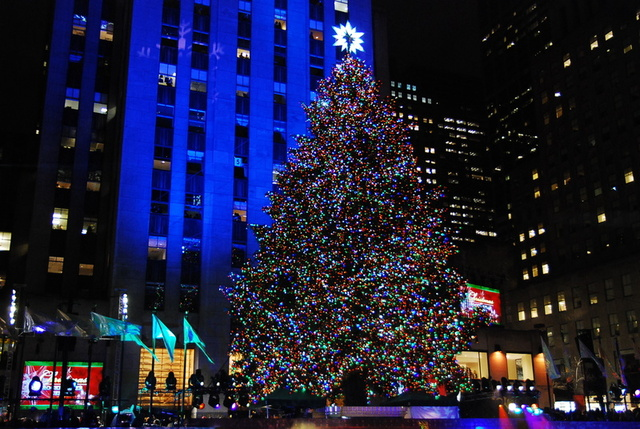 <p>This year&#39;s Rockefeller Center Christmas Tree, a Norway Spruce, contains over 30,000 LED lightbulbs.</p>
