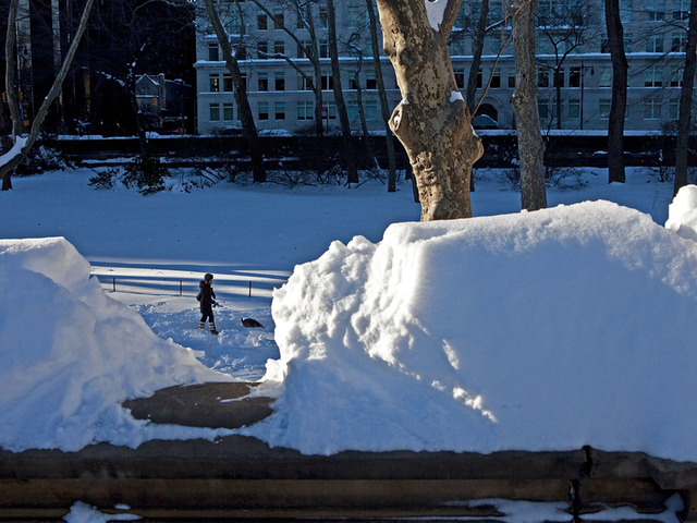 <p>A woman walking a dog is seen through a break in a snowpile atop a bridge railing following a major blizzard on Dec. 27, 2010 in New York City.</p>