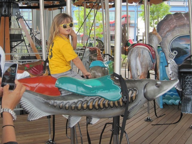 <p>Child riding the merry-go-round at Chelsea Cove.</p>