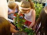 Upper East Side Co-op Builds Rooftop Garden for Children