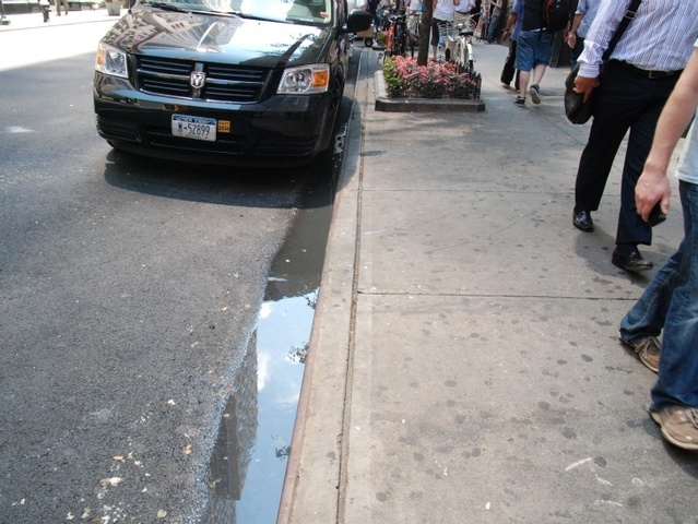 The puddle had shrunk considerably since last week.