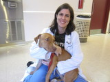 ASPCA's 'Operation Pit' Marks First Year of Pit Bull Program