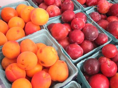 Plums were in season Thursday at the greenmarket.