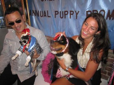 Prom king Bandit and prom queen Holly celebrated with their owners, Anthony Rubio, left, and Kristen Tyburski, right.