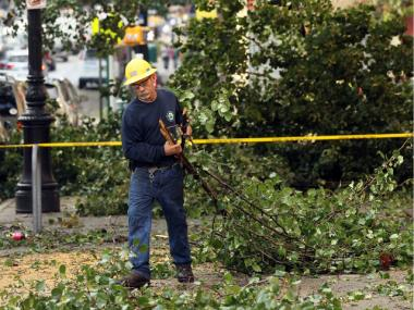 An employee of the New York City Parks Department cleans up a downed tree following a late afternoon storm on September 17, 2010.