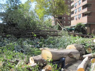 Crews worked to clear out downed trees in parks in the East Village and Lower East Side.