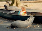 Central Park Conservancy to Revamp Playgrounds