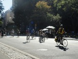 City Should Add Bike-Specific Stop Lights in Central Park, Locals Say
