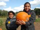 The City Slicker's Guide to Pumpkin Picking