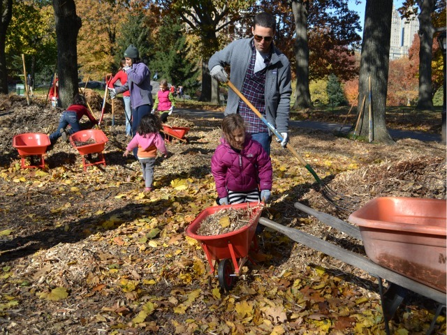 <p>Lulu Krim, 5, pushes a wheelbarrow as her dad, Kevin Krim, looks on. Both were participating in Family Day in Central Park near Mineral Springs Cafe.</p>
