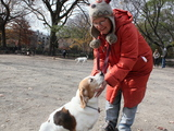 East Village Dog Owners Watch Masters as Much as Pets to Prevent Fights