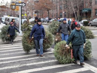 MulchFest is an annual tree recycling event sponsored by the New York City Department of Parks & Recreation, the New York City Department of Sanitation and GreeNYC.