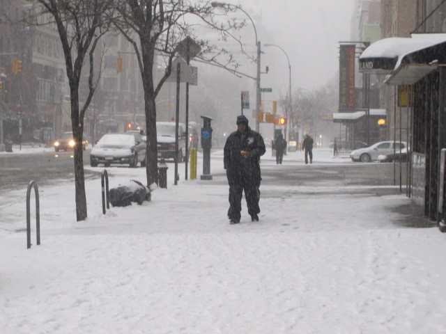 <p>A blanket of snow covers Second Avenue in the East Village on Sat., Jan. 21, 2012.</p>