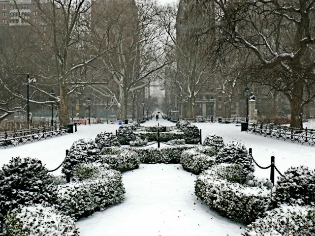 <p>Snow blanketed Washington Square Park on Sat., Jan. 21, 2012.</p>