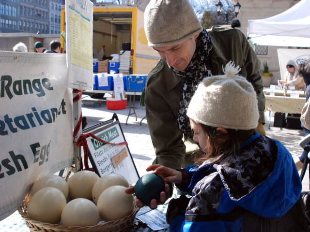 Brooklyn artist Tim Smith, 25, shows his son Finn, 8, what the emu egg looks like in the sunlight.