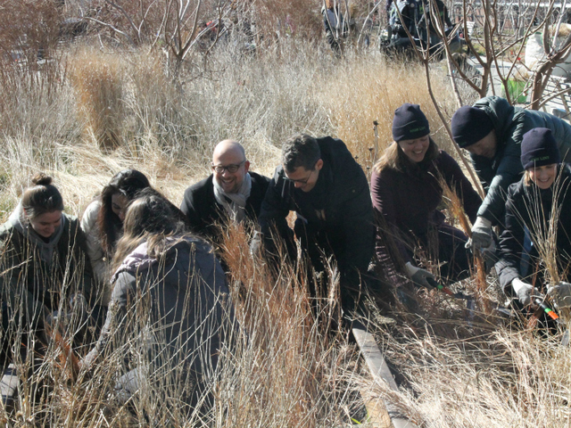 <p>High Line co-founders Joshua David and Robert Hammond (center) cut back plants with volunteers.</p>