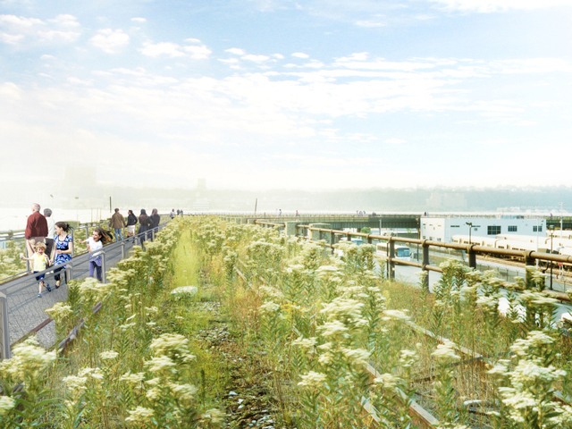The construction of the project will be done in phases, but the Friends have proposed building an interim walkway on the Western half of it, allowing partk-goers to experience the wild grasses and flowers of the undeveloped section until the organization is able to fully build it.