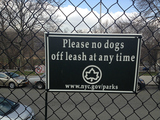 CB12 Committee Recommends Overnight Off-Leash Dog Rule in Isham Park