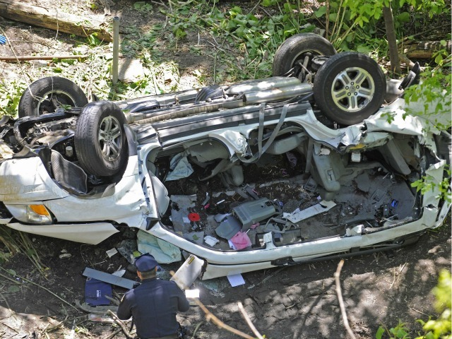 A van fell 100 feet from the Bronx River Parkway into the Bronx Zoo, killing seven, including a toddler.