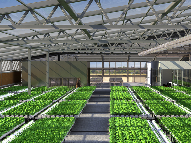 A rendering of how the hydroponic greenhouses will look when completed.