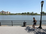 15-Year-Old Boy Dies After Fall Into Harlem River