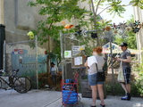 Crown Heights Community Garden to Be Razed as Neighborhood Blooms
