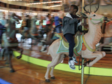 Landmarking Carousel Could Make Operating Ride Difficult, Some Say