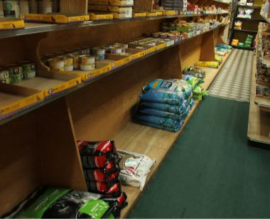 Kil Chung, owner of Smith Pet Food, has a hard time stocking his shelves since Petsmart opened around the corner from his shop.