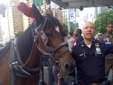Carriage Horse, SUV and Motorcycle Collide in Columbus Circle Crash