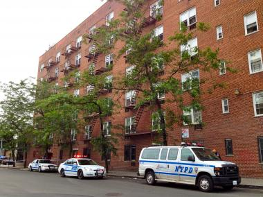 Luz Paulino, 33, was stabbed and killed in her fifth-floor apartment on June 11, 2012.