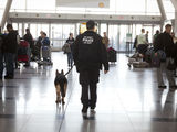 Port Authority Fined $3.5 Million For Failure to Train Airport Personnel
