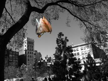 """Cart in the Park,"" a digital photograph by Aimee Hertog, is one of the 41 pieces selected to be shown at the Staten Island Museum's Juried Art Exhibit."