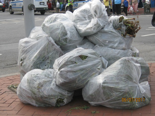 Bags of weeds removed from the rosebush beds along the 161st Street overpass.