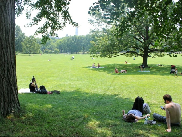 Park-goers sought shade in Central Park on June 20, 2012, the first day of summer.