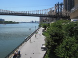 Shorewalkers is a great way to meet new people while exploring Brooklyn's waterfront.